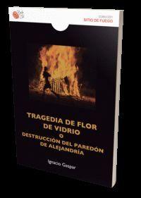 TRAGEDIA DE FLOR DE VIDRIO O DESTRUCCION PAREDON DE ALEJAND