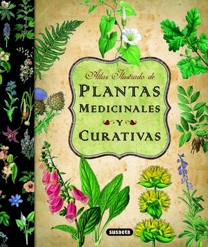 PLANTAS MEDICINALES Y CURATIVAS