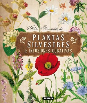 PLANTAS SILVESTRES E INFUSIONES CURATIVAS